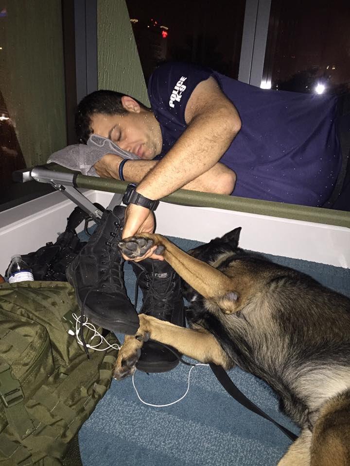 「毀滅級颶風」艾瑪肆虐佛州,卻出現了員警和警犬搭檔「患難見真情」網路瘋傳!