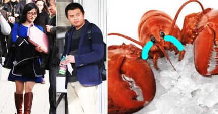 想表現佛心「花20萬買700條龍蝦」放生,海濤法師信徒「嚴重損害生態」慘被罰61萬台幣!