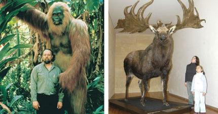16個證明你只是「小人」的地球上體型最巨大各種生物。你只能幫「帝鱷」塞牙縫!