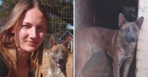 狗狗因傷人將被安樂死,她花6天時間「聆聽狗的內心」換取他一輩子幸福!