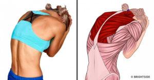 不用按摩師!18個可以自己在家裡做的「簡單拉伸運動」全身肌肉運動圖!
