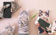 日本推出超可愛「滑手機貓咪手套」,讓人融化的「賣萌設計」貓奴們都淪陷了!