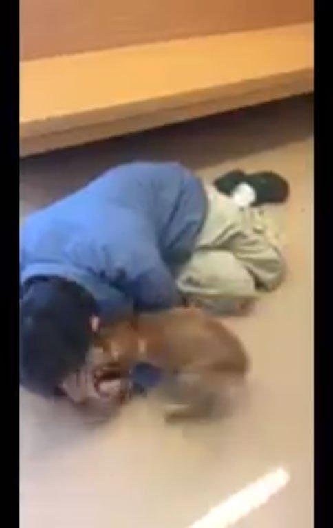 街友花光積蓄為找愛犬「睡庇護所門口」整夜,奔波「重逢畫面」逼哭無數人!