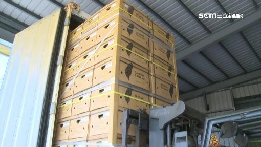 台灣香蕉第一次賣到杜拜「身價翻漲8倍」,把錢都還給農民!
