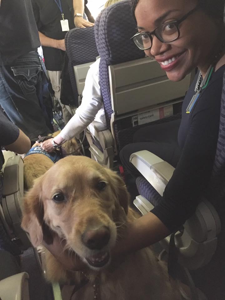 17隻狗狗搭飛機遠赴拉斯維加斯,只為向槍擊受害者「送上最溫暖擁抱」!