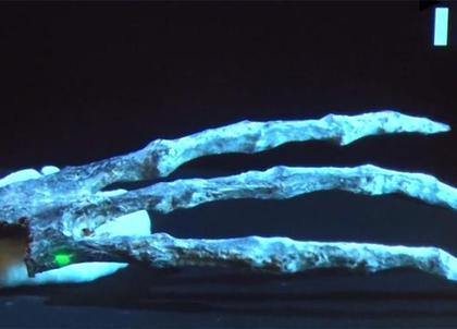 秘魯挖出「千年乾屍」,近看「根本是咕嚕後代」手指太驚悚