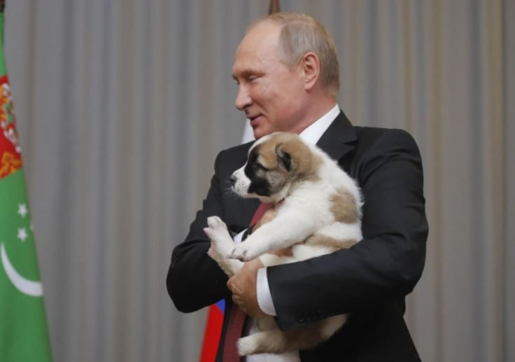 俄羅斯總統普丁收到「最溫馨禮物」硬漢形象徹底融化,秒離開座位「要親親抱抱」!