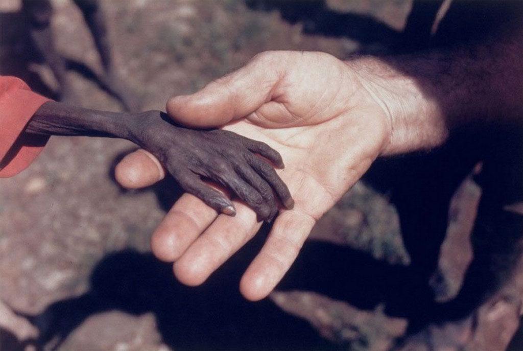 19張過著安逸生活的人一輩子看不到的「伸手不見五指」世界黑暗面