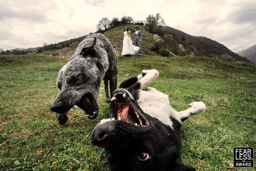 30張美到讓你忘記呼吸的「2017年度最驚豔婚紗照」!