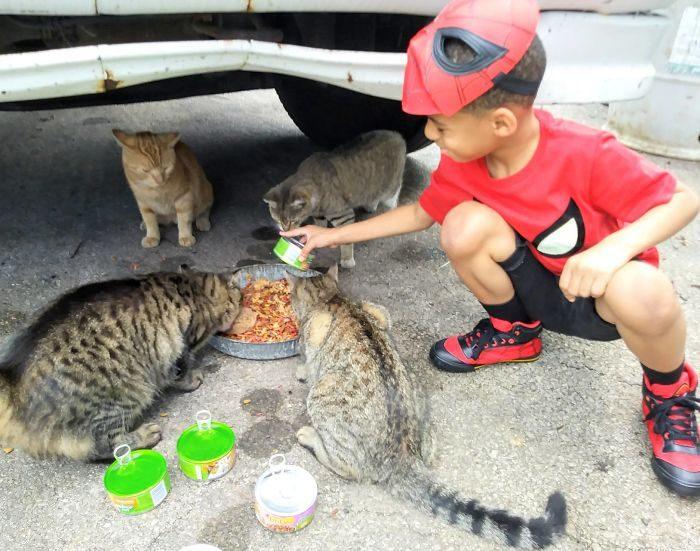 5歲男孩自認是「貓咪英雄」!「穿上英雄裝出任務」連最兇的貓都自動臣服...暖炸全世界!