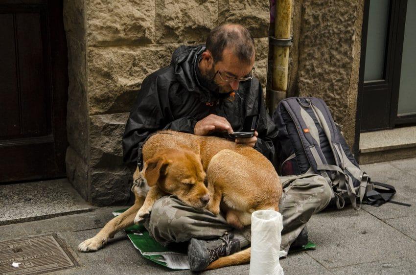 好心房仲捐錢給路邊「帶著狗狗的流浪漢」,幾個月後她發現跟她買房子的客戶就是那個流浪漢!
