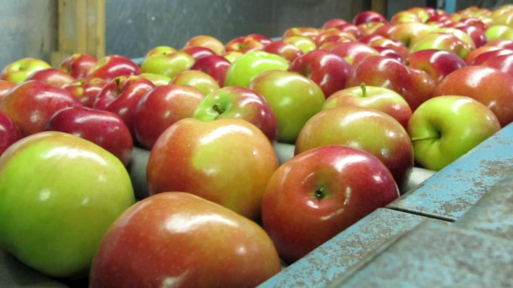 你以為自己都有把農藥洗掉就錯了!正確洗蘋果方法「完全清除」表皮農藥殘留!