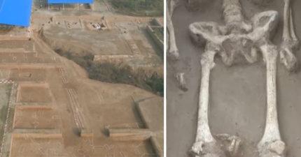 剁手族「早在5600年前」就有!陜西340座古墓每個人「手腕被割開」...當時可夯了