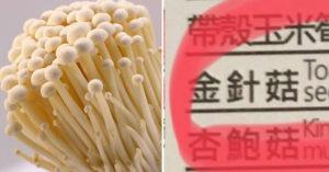 瞄到「金針菇的英文翻譯」笑噴!餐廳菜單「翻譯太到位」網友:真的明天就懂!