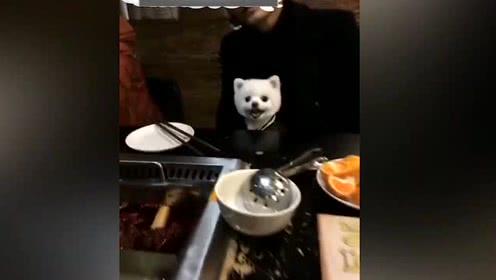 「毛小孩也是家人!」女子硬要帶狗狗吃火鍋被店家拒絕,暴怒評1顆星「請加強智商!」慘被網友一面倒嗆爆!