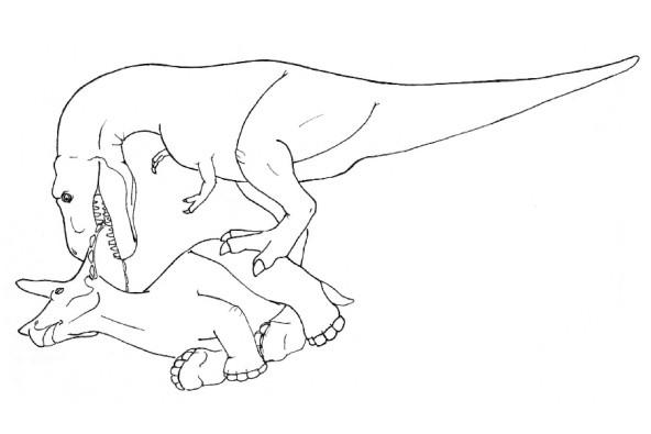 恐怖暴龍「稱霸侏羅紀的原因」萌到爆炸,胸前「2隻小雞腿」竟是最致命的武器!