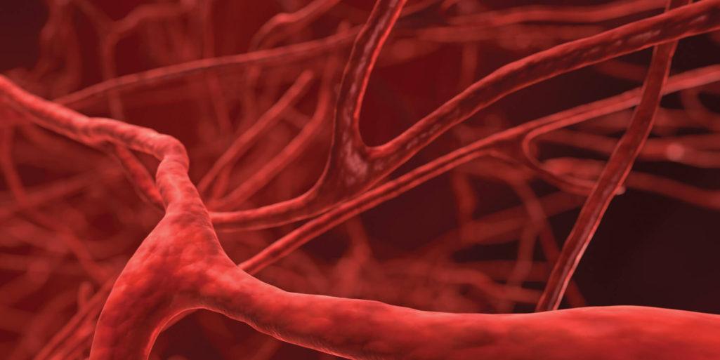 17個證明人類真的是地表最奧秘生物的「不可思議驚奇人體事實」!人的血管長度可以繞地球2圈!