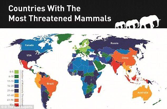 继1992年来全球1万5千名科学家再度「向人类发出警告」:地球已遭到不可逆破坏,已经是最后机会了… -5a0a6171e5be0