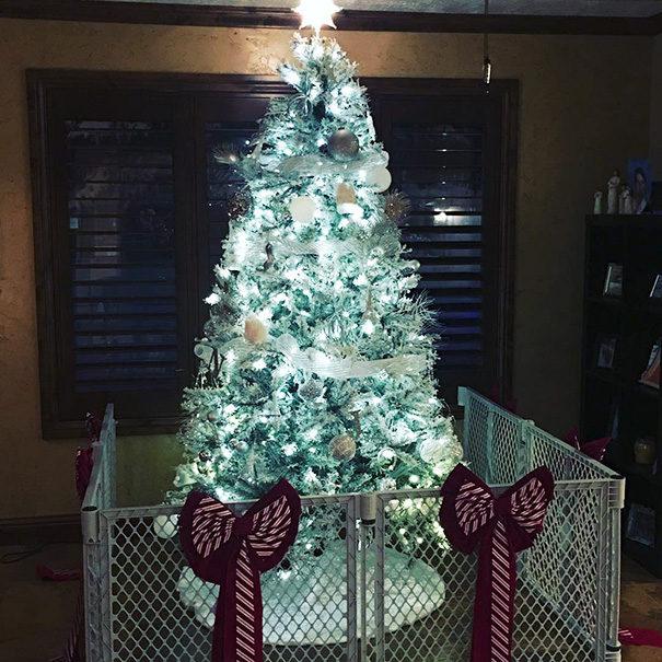 35個用盡生命在守護「防止毛小孩破壞聖誕樹」終極護樹大作戰!