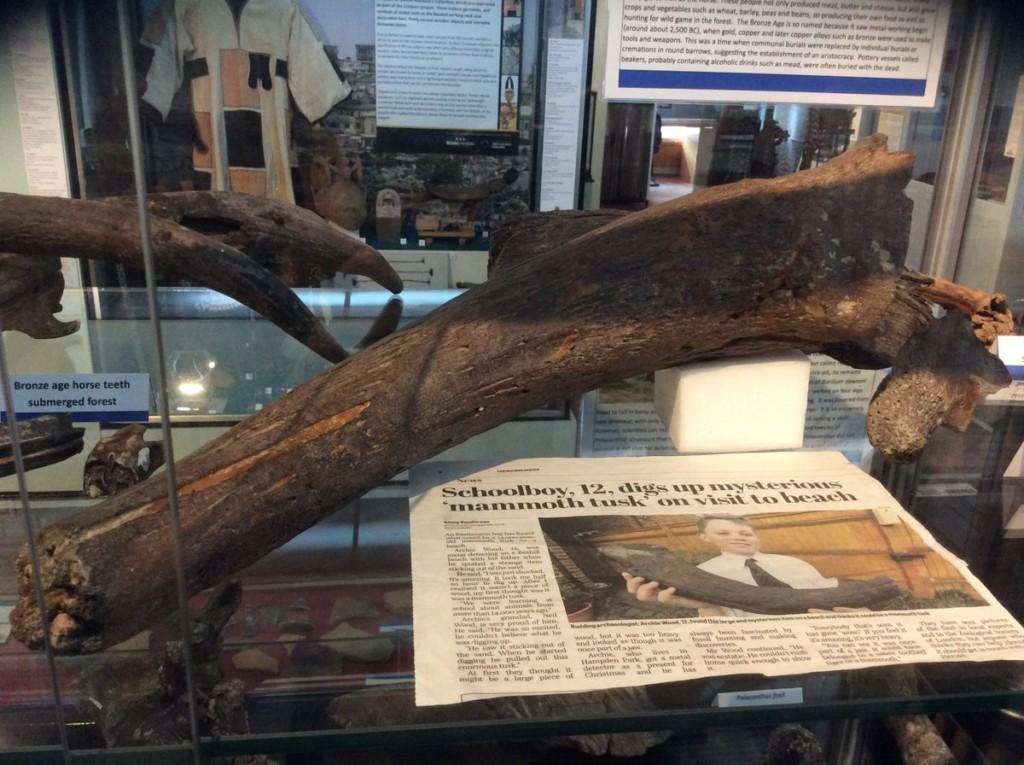 12歲童海邊撿到「朽木」...專家一看「6000年歷史珍寶」博物館花錢搶買!他拒絕後名留青史