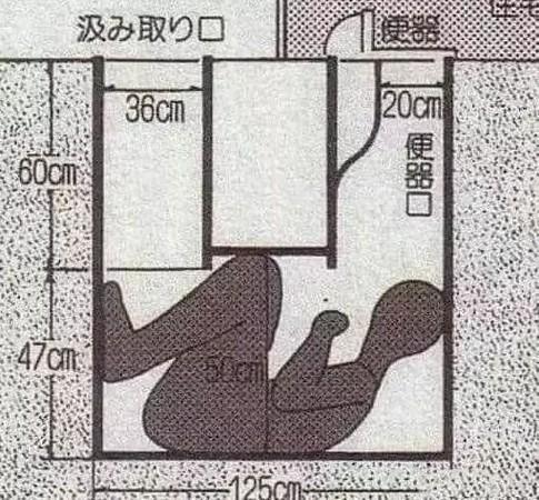 日本女教師上廁所發現「便桶下有人」,至今還無解的「最噁離奇命案」!