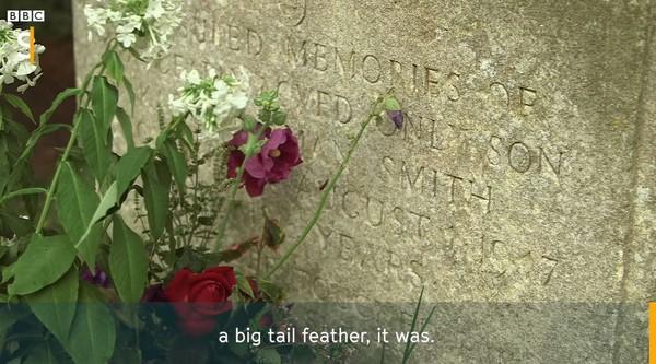 哥哥12歲離開卻有「神秘訪客持續送花」 70年後才發現最珍貴緣份