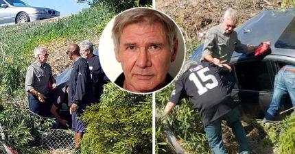好萊塢好人好事代表!75歲哈里遜福特不擺「明星架子」,熱心幫助前方墜車女駕駛!