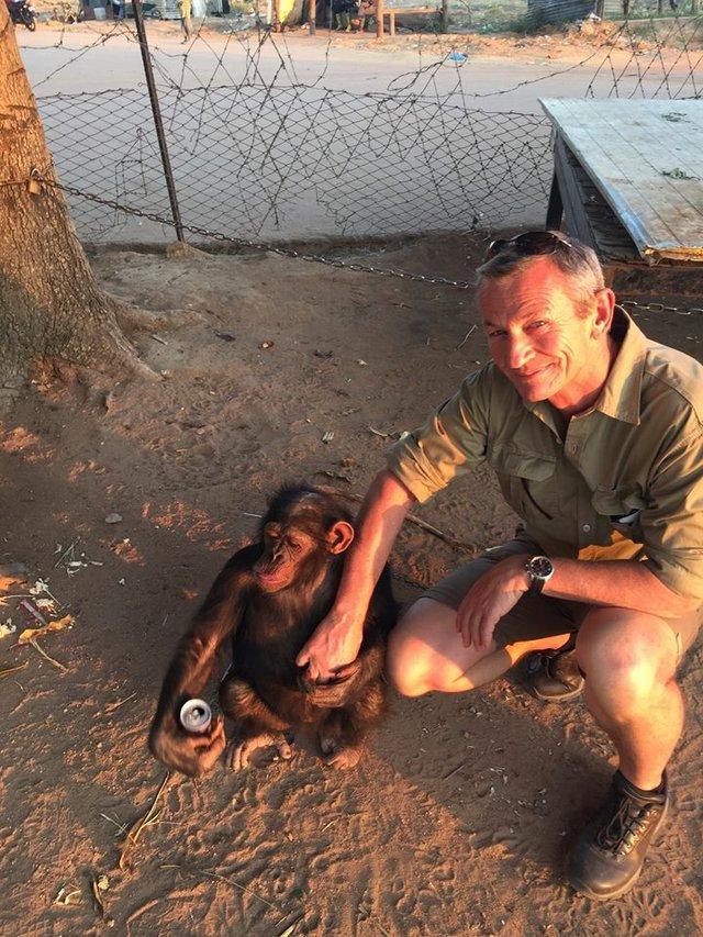 超有靈性的黑猩猩被「綁在樹上多年」喝尿生存,男子拯救後她給了「最有愛的感謝」!