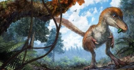 科學家挖掘1.25億年前恐龍化石發現到他們之前都錯了...《侏儸紀公園》可能需要重拍囉!