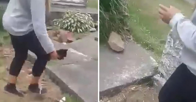 年輕女生不斷用「水泥塊砸死貓咪」的影片被動保組分享,看之前必須要有心理準備