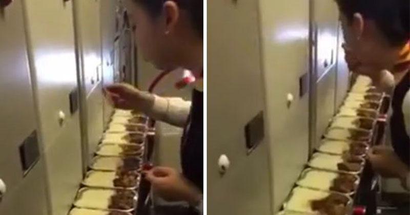 正妹空姐「偷吃14盒乘客剩飯」遭停飛懲處網打抱不平!烏航公開「豬隊友真相」劇情大逆轉!(影片)
