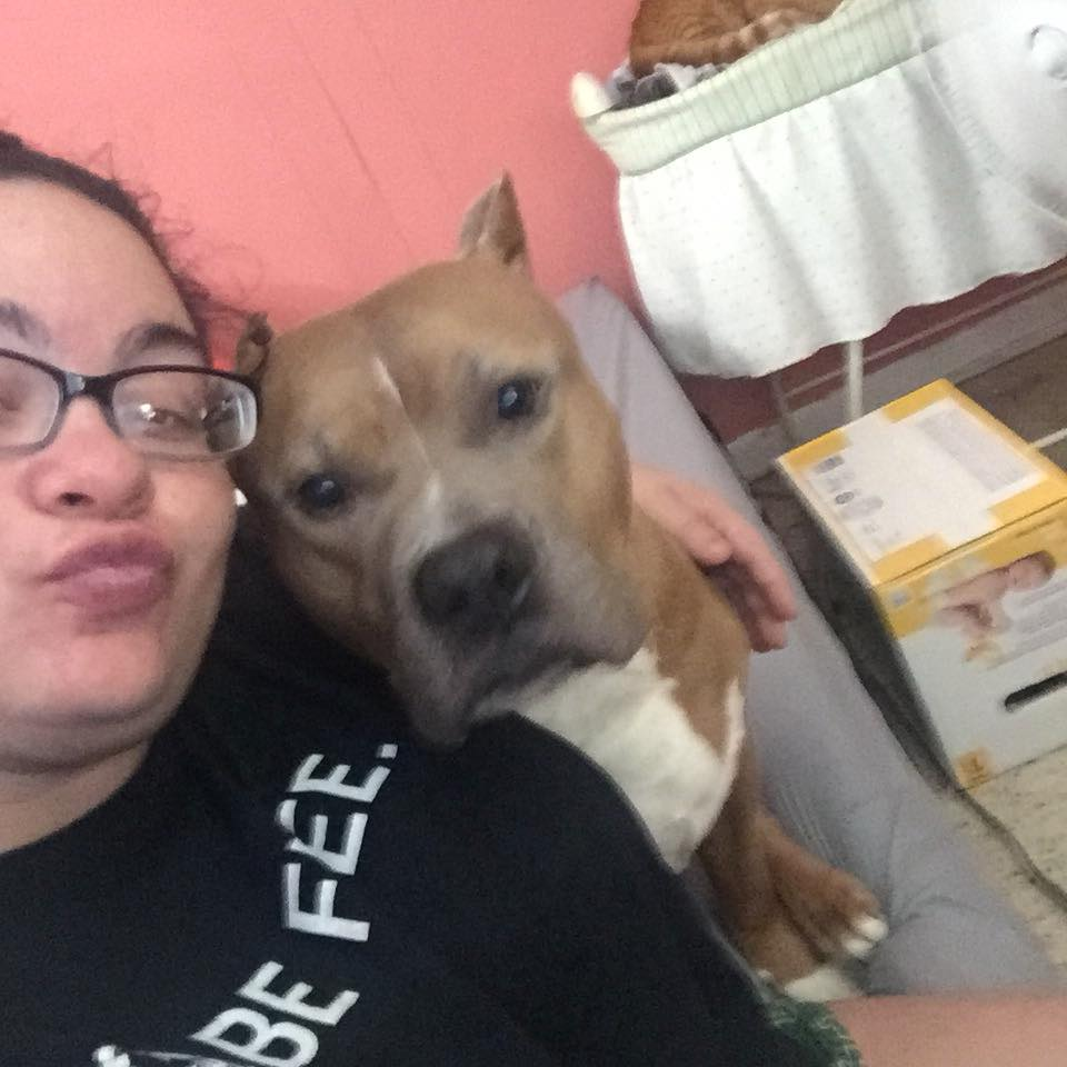 養3年比特犬「發狂甩咬媽媽」,8月孕婦忍痛「拿刀宰狗救母」卻被網友罵翻