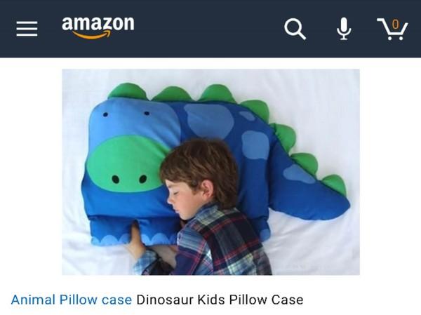 網路購買「可愛恐龍抱枕」滿心期待,收貨卻發現圖片裡「男孩」也被打包空運了!