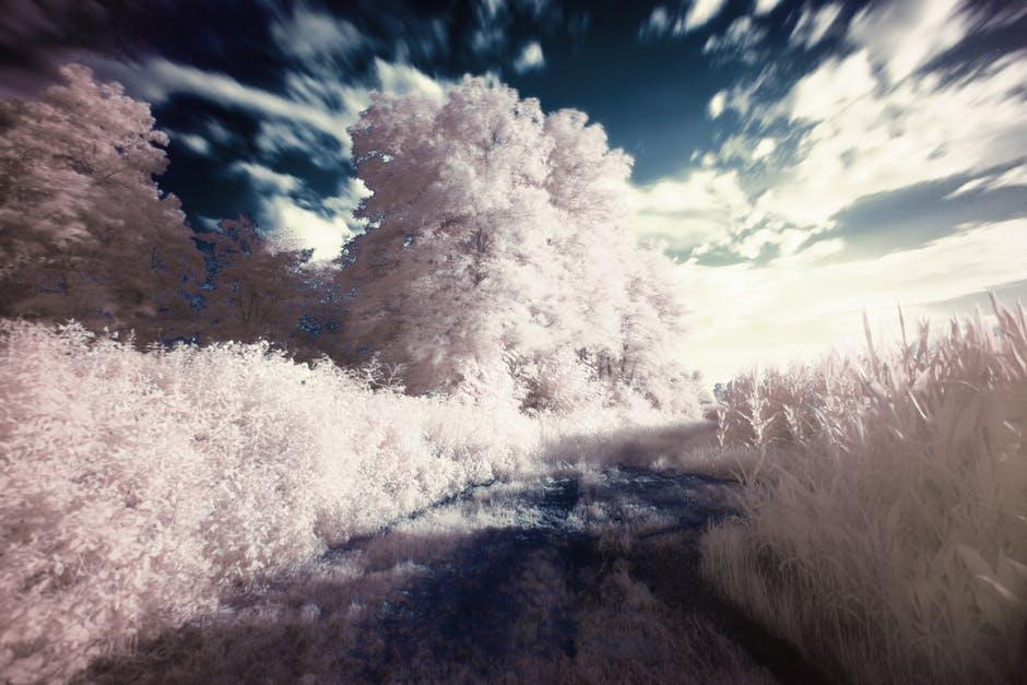 7個比《全面啟動》還驚奇的驚人作夢知識...在夢中你是無法走路的
