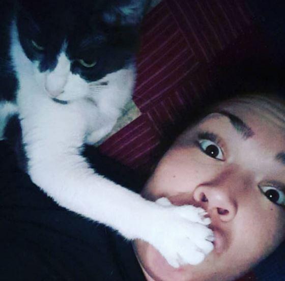 17張證明「貓咪是你永遠都無法討厭的反派角色」的萌萌貓咪爆笑日常