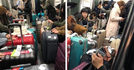 台遊客沒水準再+1!「一張日本電車照」丟盡台灣人臉,他:被中文廣播還裝睡偷笑