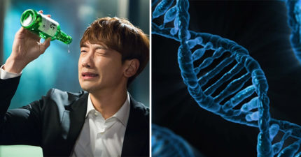 愛喝酒請注意!研究發現酒精會「永久破壞DNA」增加「罹患7種癌症」的風險!