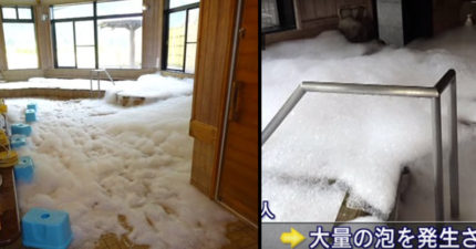 2屁孩在「日本溫泉怒倒8瓶沐浴乳」,結果卻變成「少女的夢幻澡堂」店家氣瘋!