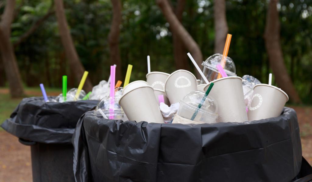 台灣領先全球?明年起「禁用塑膠吸管」成全球首例,但網友:跟日本比起來像智障