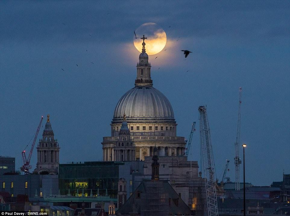 罕見「月球3部曲」31日即將登場!紅月不夠看「超級藍月血月」相隔150年首次齊現身!