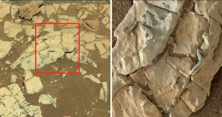 NASA在火星發現明顯非自然「詭異棒狀物」,專家驚:是外星生物化石!