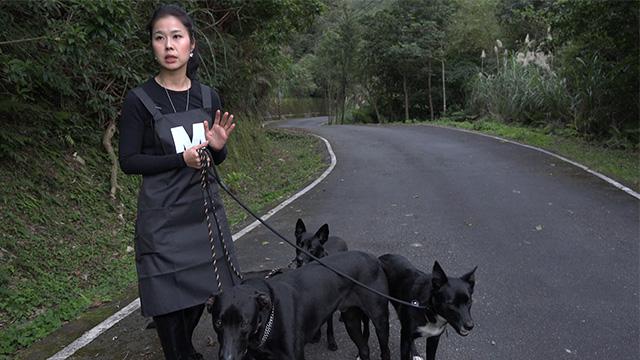 無知台人「把國寶當垃圾」都送外國去 救援者怒:台灣觀念有問題!