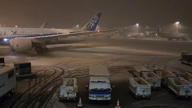 日本睽違4年大雪成田機場「宵禁」!20公分積雪讓「上萬喪屍」排隊搶食麥當勞,她:衛生棉都要搶的