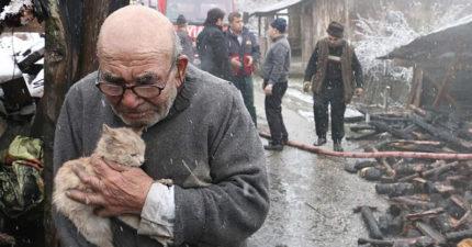 房子燒成灰燼!83歲爺爺發現愛貓活著,撐著拐杖「緊抱小貓咪哽咽」全網心碎!(影片)