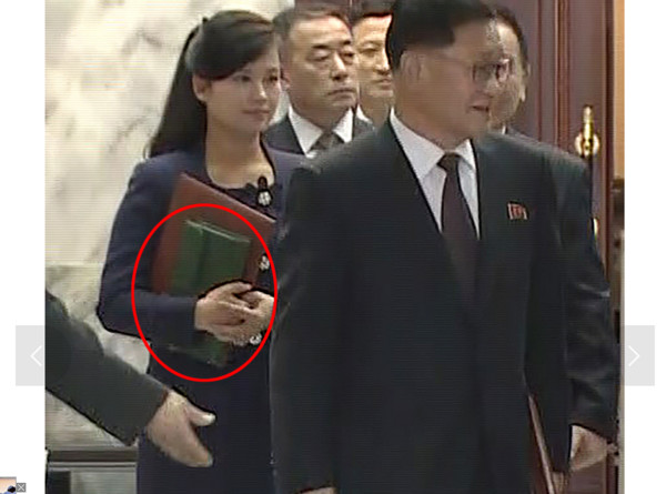 北韓人啃樹皮吃老鼠,金正恩前女友「拎尊爵不凡70萬愛馬仕」連南韓網友都傻「難道北韓是幸福國家?」