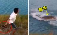 少年拎無助小狗「往湖裡打水瓢」,狗兒空中扭動掙扎「下一秒變鱷魚晚餐!」(影片)