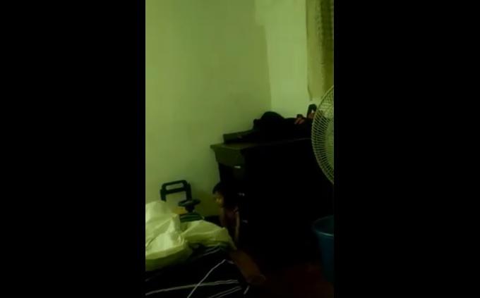 哆啦A夢是你嗎?睡到一半驚見「抽屜不斷自動開關」,「兇手現身」網差點嚇尿:爬出來的瞬間更可怕