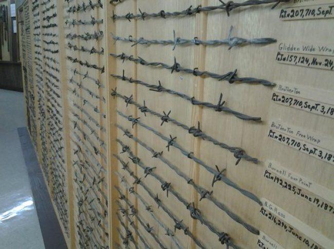 15個世界各地的「超特殊博物館」,頭髮、鐵絲網、屍體都可以當展品!韓國的愛愛博物館每種「根」都有!