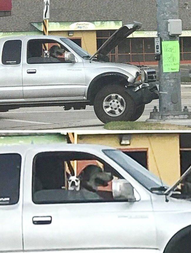 22張廢到放鬆「跳脫大腦可處理範圍」的怪邏輯照片 慘到不行的車子...一看駕駛秒懂了