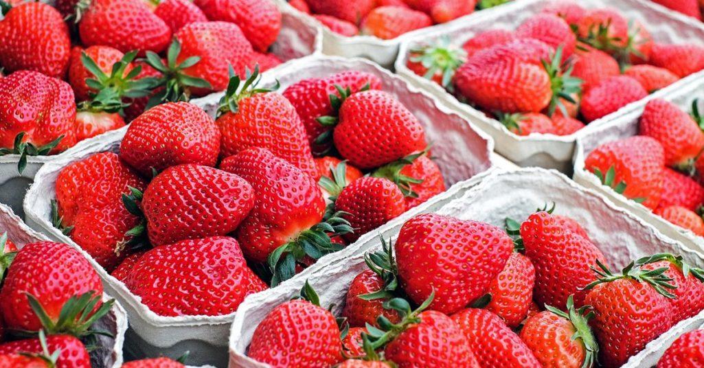 如何一秒辨認好吃的草莓?大湖在地人PO「採草莓攻略實用文」!「2大品種美味關鍵」網推爆:長知識了